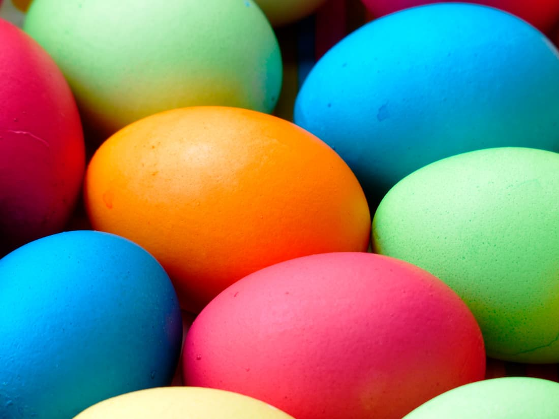 new theme easter facts eggs color