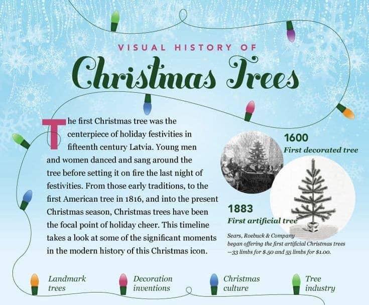 christmas tree infographic