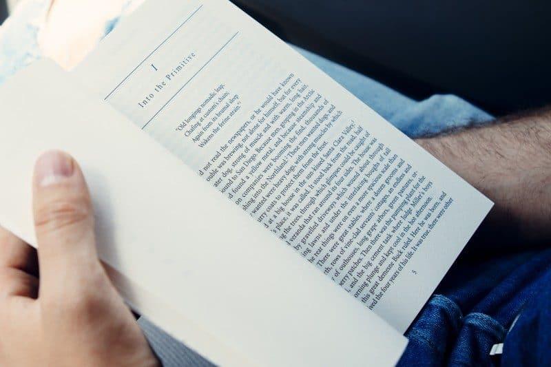 book-800x533-4205251