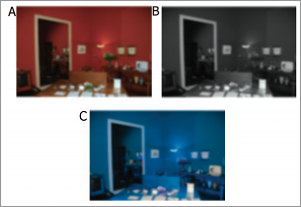 color perception examples
