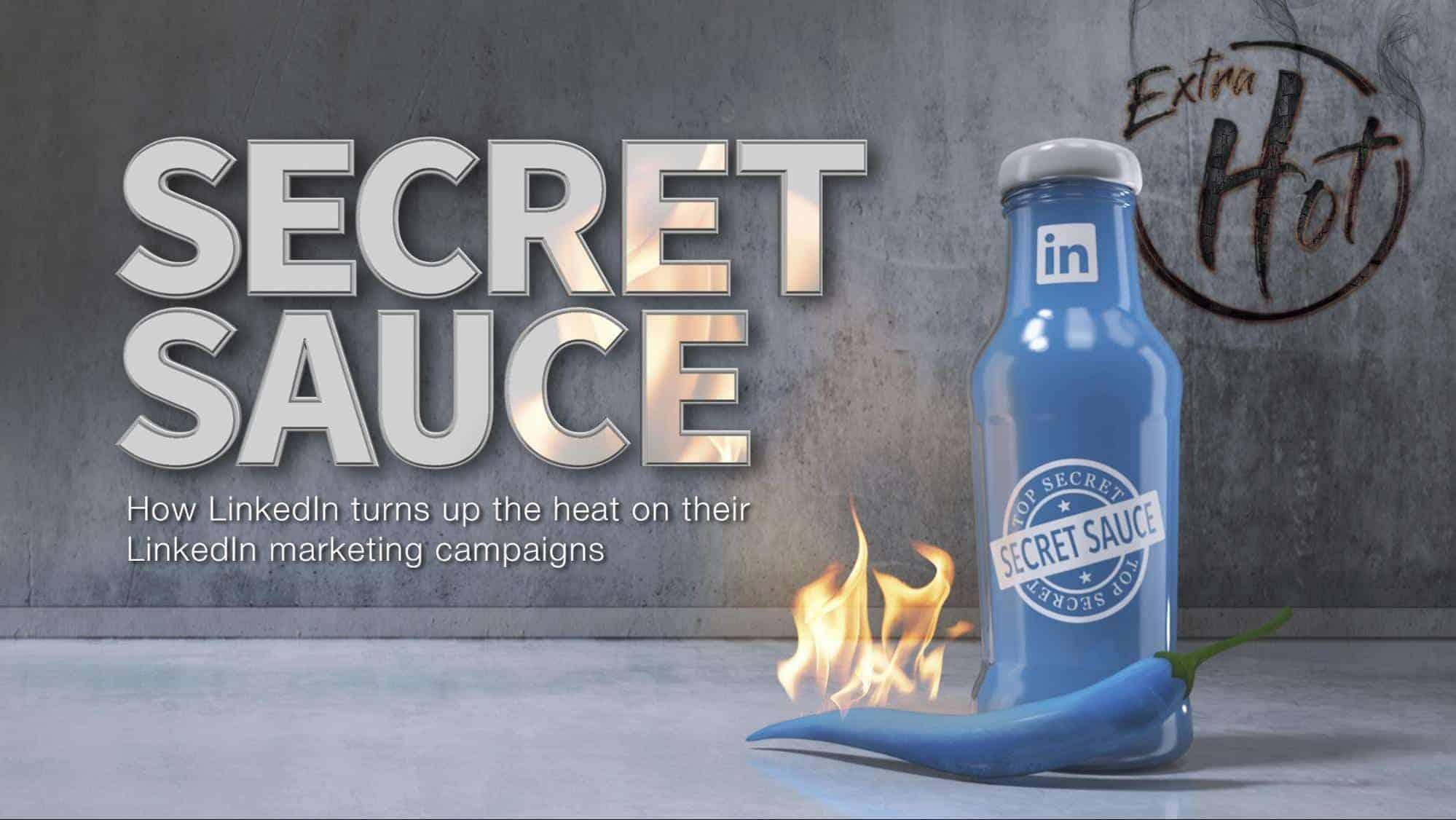 secret sauce linkedin free ebook, book cover inspiration, free book example