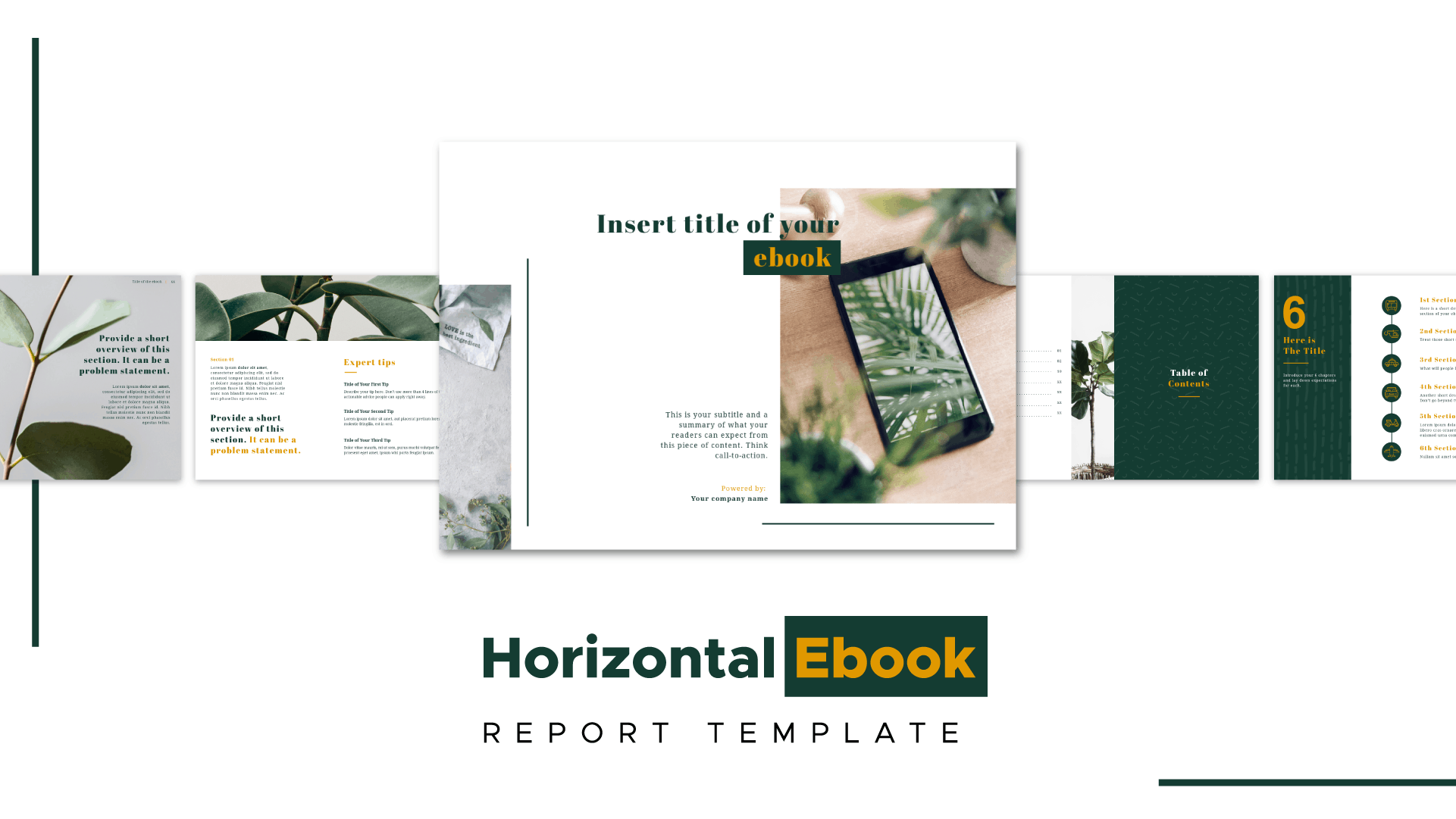 templates-visual_report_1208-1-6325597