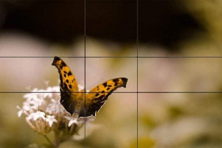 digital-photography-school-7956453