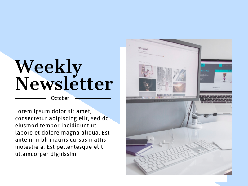 weekly newsletter infographic