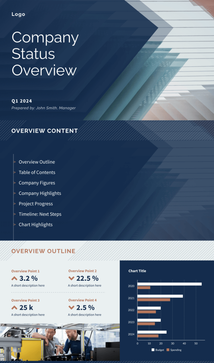 Company Status Overview Widescreen, presentation, template preview